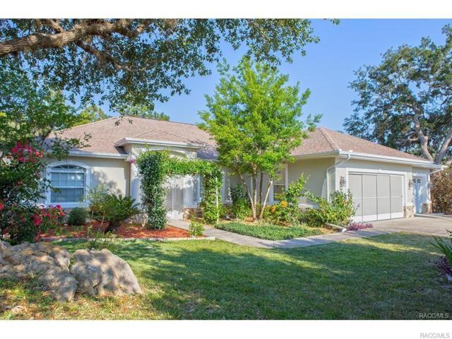 5735 W Paprika Loop, Homosassa, FL 34448 (MLS #766266) :: Plantation Realty Inc.
