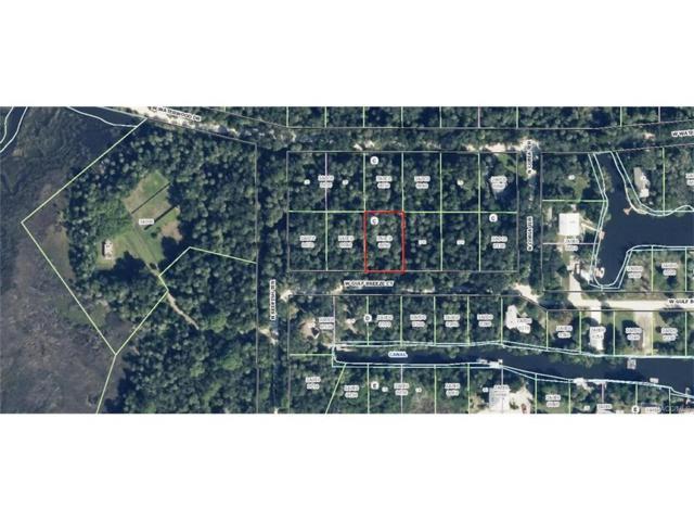 12208 W Waterwood Drive, Crystal River, FL 34429 (MLS #766356) :: Plantation Realty Inc.