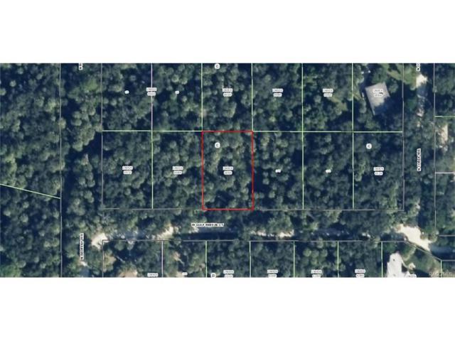 12207 W Gulf Breeze Court, Crystal River, FL 34429 (MLS #766357) :: Plantation Realty Inc.