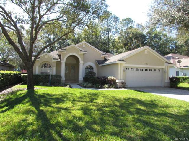 19586 SW 84th Place, Dunnellon, FL 34432 (MLS #766446) :: Plantation Realty Inc.