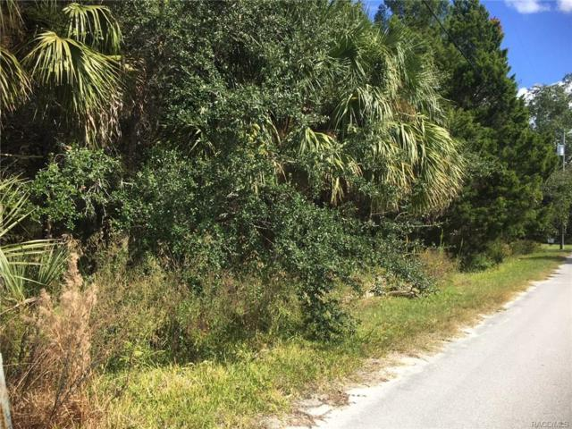 10449 W Larchwood Street, Homosassa, FL 34448 (MLS #766453) :: Plantation Realty Inc.