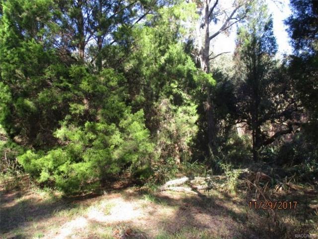 5921 N Brookgreen Drive, Crystal River, FL 34428 (MLS #766460) :: Plantation Realty Inc.