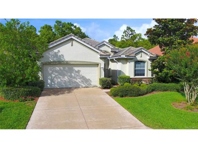 1349 W Diamond Shore Loop, Hernando, FL 34442 (MLS #766526) :: Plantation Realty Inc.