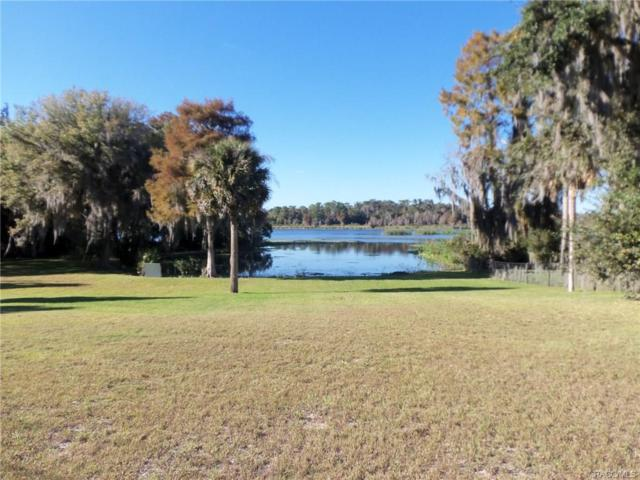 7735 W Riverbend Road, Dunnellon, FL 34433 (MLS #766536) :: Plantation Realty Inc.