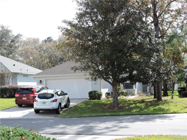 56 W Byrsonima Loop, Homosassa, FL 34446 (MLS #766557) :: Plantation Realty Inc.