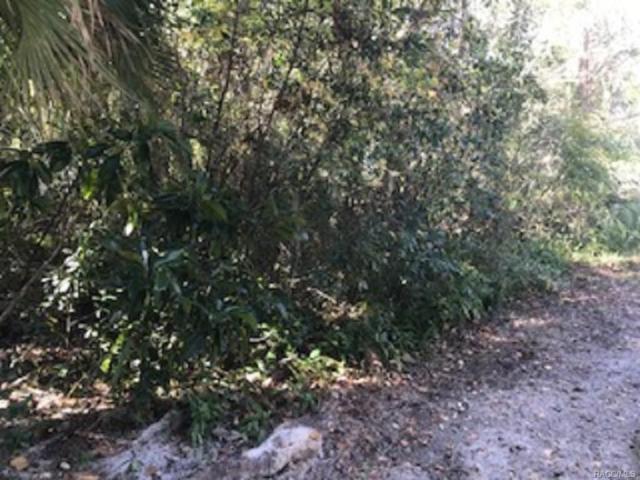 0 64th Street, Yankeetown, FL 34498 (MLS #766559) :: Plantation Realty Inc.