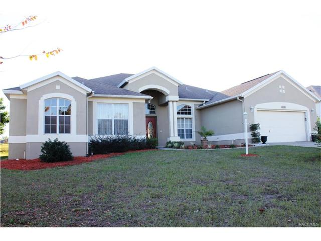 256 W Romany Loop, Beverly Hills, FL 34465 (MLS #766561) :: Plantation Realty Inc.
