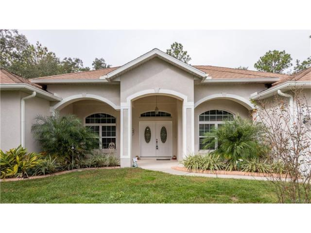 12 Douglas Court S, Homosassa, FL 34446 (MLS #766583) :: Plantation Realty Inc.