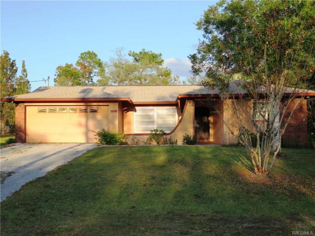 8165 N Ibsen Drive, Citrus Springs, FL 34433 (MLS #766593) :: Plantation Realty Inc.