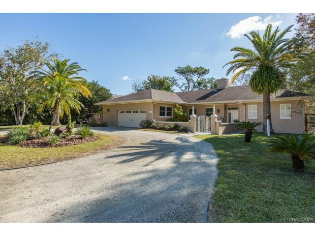 9210 W Harbor Isle Court, Crystal River, FL 34429 (MLS #766619) :: Plantation Realty Inc.