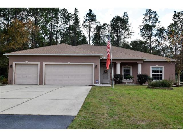 20060 SW 59th Lane, Dunnellon, FL 34431 (MLS #766630) :: Plantation Realty Inc.