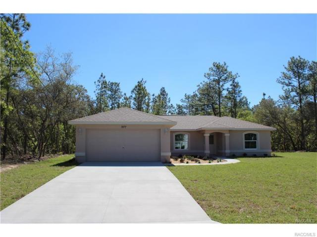 1295 W Sorrento Drive, Citrus Springs, FL 34434 (MLS #766641) :: Plantation Realty Inc.