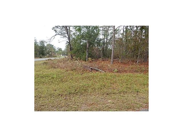 3153 W Misty Place, Citrus Springs, FL 34433 (MLS #766642) :: Plantation Realty Inc.