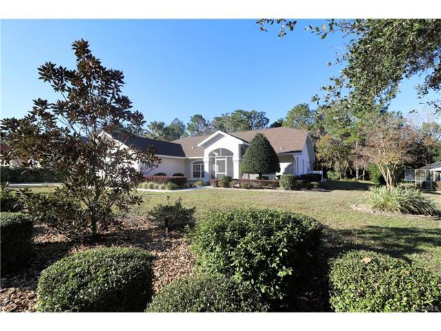 838 N Lafayette Way, Inverness, FL 34453 (MLS #766682) :: Plantation Realty Inc.