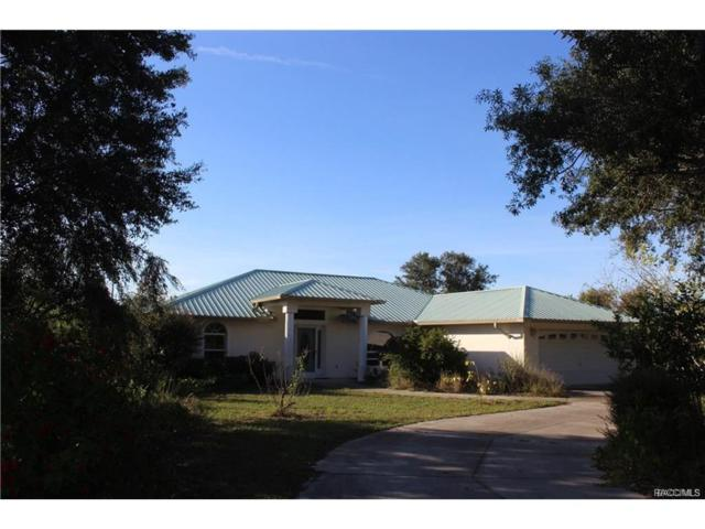 1190 N Crause Point, Lecanto, FL 34461 (MLS #766690) :: Plantation Realty Inc.
