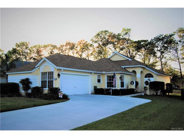 10 W Byrsonima Loop, Homosassa, FL 34446 (MLS #766701) :: Plantation Realty Inc.