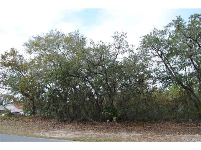 2 Linder Street, Homosassa, FL 34446 (MLS #766708) :: Plantation Realty Inc.