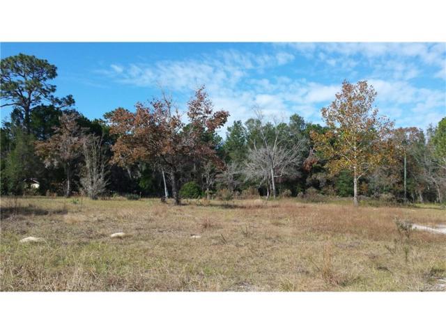 1920 S Melanie Drive, Homosassa, FL 34448 (MLS #766715) :: Plantation Realty Inc.