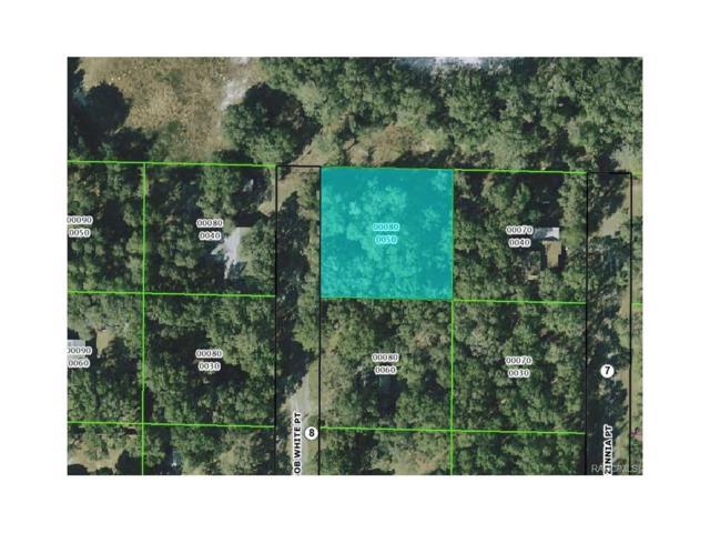193 N Bobwhite Point, Inverness, FL 34453 (MLS #766727) :: Plantation Realty Inc.