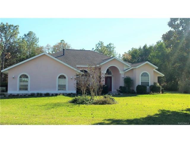 12 Matricaria Court, Homosassa, FL 34446 (MLS #766734) :: Plantation Realty Inc.