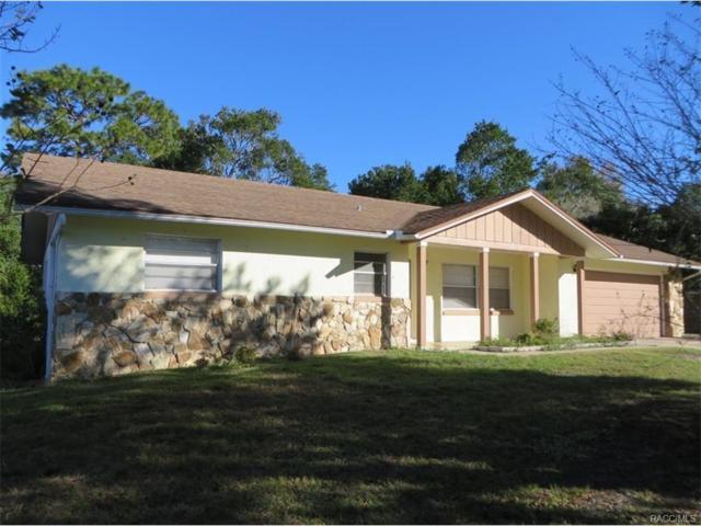 7 Michigan Street, Beverly Hills, FL 34465 (MLS #766749) :: Plantation Realty Inc.