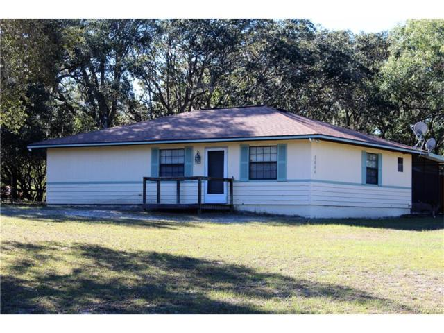 8644 N Ural Point, Dunnellon, FL 34433 (MLS #766754) :: Plantation Realty Inc.