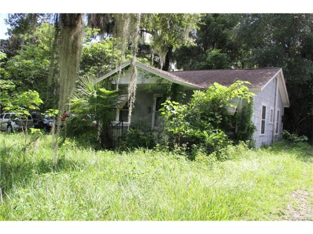207 S Pine Avenue, Inverness, FL 34452 (MLS #766779) :: Plantation Realty Inc.