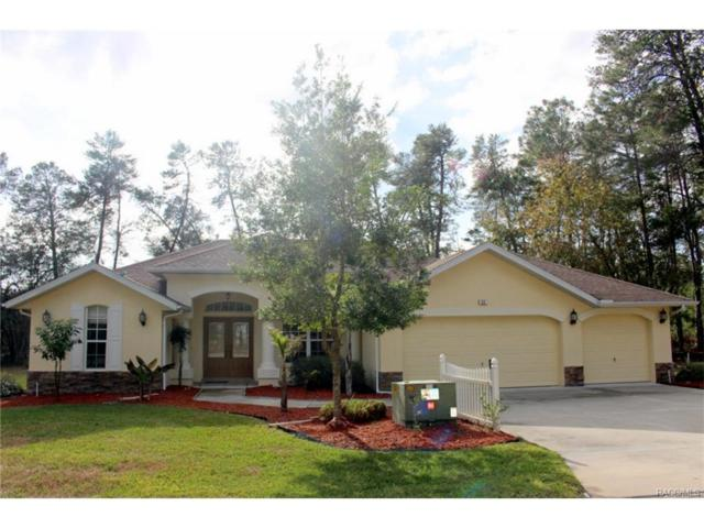 23 Dianthus Court, Homosassa, FL 34446 (MLS #766781) :: Plantation Realty Inc.