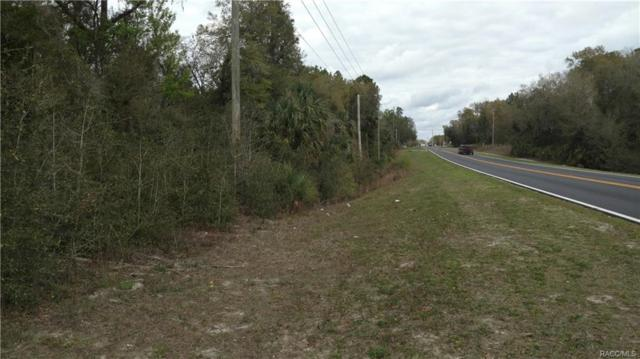 9609 N Morano Terrace, Crystal River, FL 34428 (MLS #767893) :: Plantation Realty Inc.