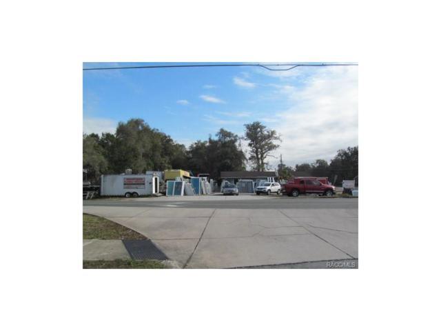 9699 E Gospel Island Road, Inverness, FL 34450 (MLS #767922) :: Plantation Realty Inc.