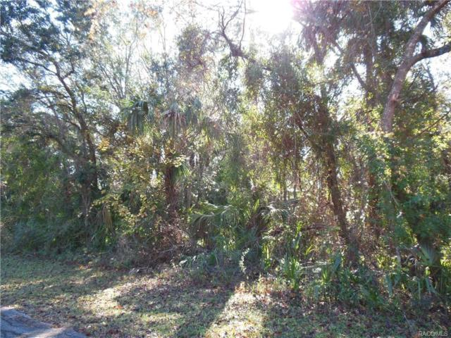 11619/11639 W Indian Circle, Crystal River, FL 34428 (MLS #768001) :: Plantation Realty Inc.