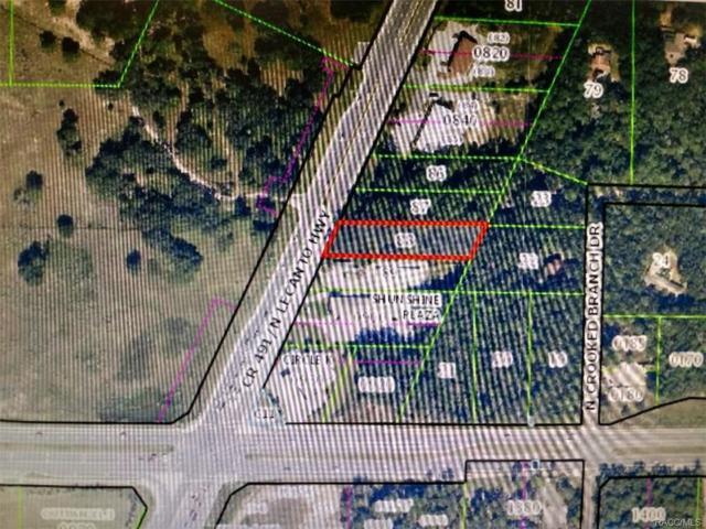 2101 N Lecanto Highway, Lecanto, FL 34461 (MLS #768036) :: Plantation Realty Inc.
