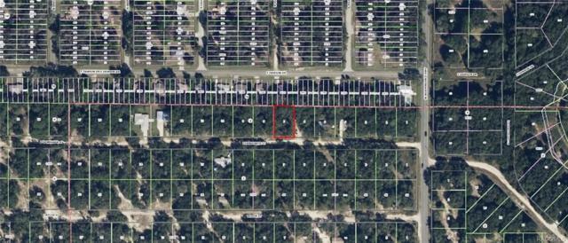 2812 Eisenhower Street W, Inverness, FL 34453 (MLS #768044) :: Plantation Realty Inc.