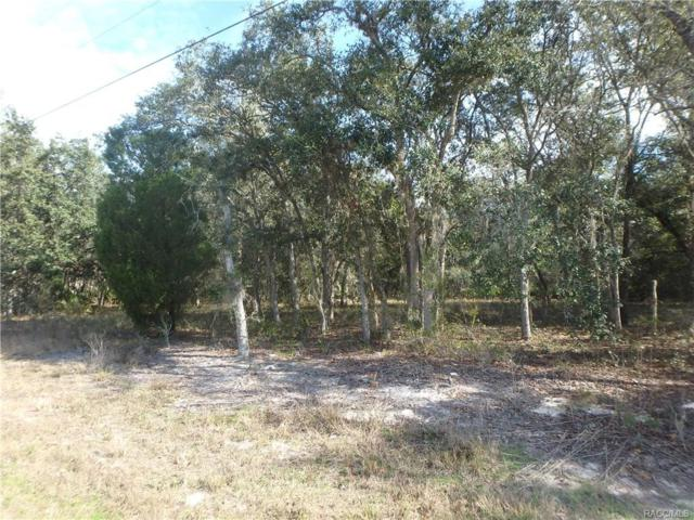 6525 N Flower Terrace, Hernando, FL 34442 (MLS #768167) :: Plantation Realty Inc.