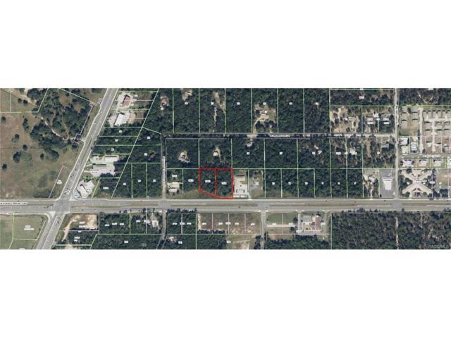 2693 + 2741 W Norvell Bryant Highway, Lecanto, FL 34461 (MLS #768199) :: Plantation Realty Inc.