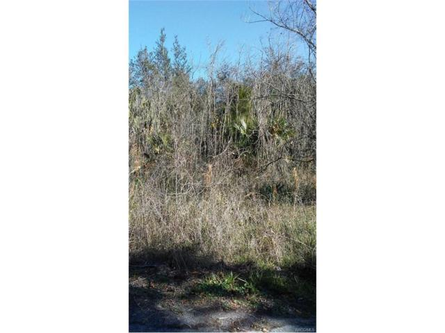 271 N Merrymen Way, Inverness, FL 34450 (MLS #768245) :: Plantation Realty Inc.