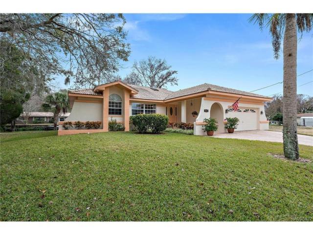 4055 S Jefferson Point, Homosassa, FL 34448 (MLS #768378) :: Plantation Realty Inc.