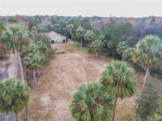 2274 S Dana Point, Homosassa, FL 34448 (MLS #768426) :: Plantation Realty Inc.