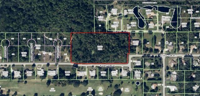 7435 W Golf Club Street, Crystal River, FL 34429 (MLS #768435) :: Plantation Realty Inc.