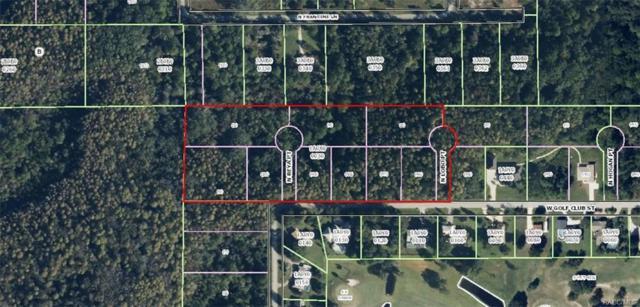 7815 W Golf Club Street, Crystal River, FL 34429 (MLS #768438) :: Plantation Realty Inc.
