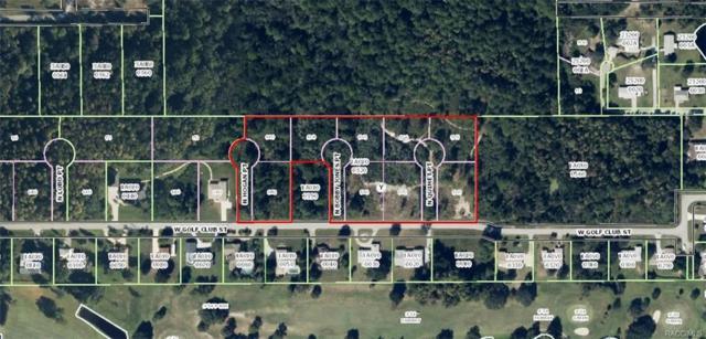 983 N Bobby Jones Point, Crystal River, FL 34429 (MLS #768439) :: Plantation Realty Inc.