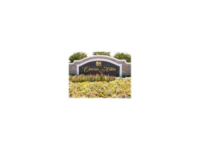 2499 E Newhaven Street, Inverness, FL 34453 (MLS #768457) :: Plantation Realty Inc.