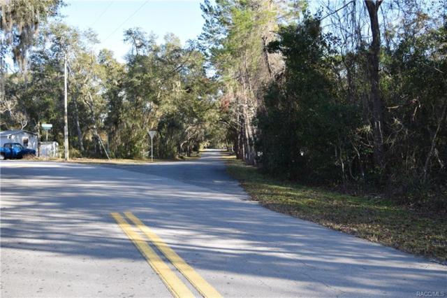 6435 N Shorewood Drive, Hernando, FL 34442 (MLS #768506) :: Plantation Realty Inc.