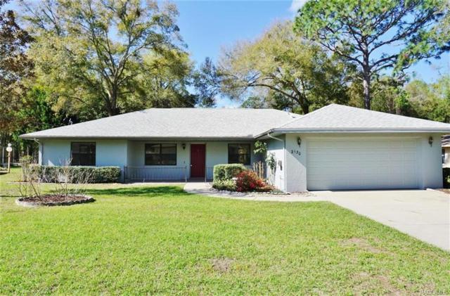 2130 W Doral Court, Citrus Springs, FL 34434 (MLS #768596) :: Plantation Realty Inc.