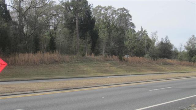 2760 W Gulf To Lake Highway, Lecanto, FL 34461 (MLS #768658) :: Plantation Realty Inc.