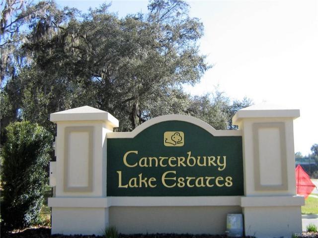 2919 N Folkestone Loop, Hernando, FL 34442 (MLS #768667) :: Plantation Realty Inc.