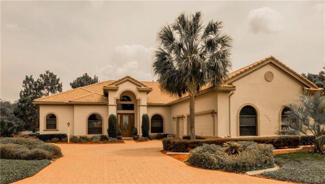 1998 N Ramblewood Point, Hernando, FL 34442 (MLS #768723) :: Plantation Realty Inc.