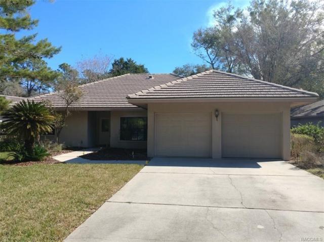 2980 W Plantation Pines Court, Lecanto, FL 34461 (MLS #768740) :: Plantation Realty Inc.
