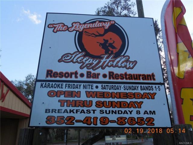 10333 E Gobbler Drive, Floral City, FL 34436 (MLS #768773) :: Plantation Realty Inc.