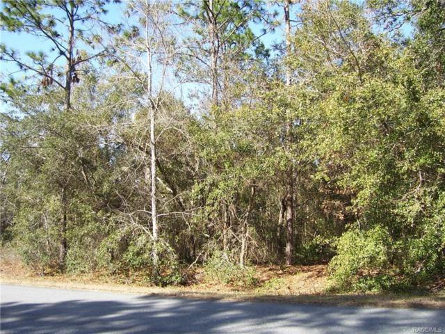 2801 E Marcia Street, Inverness, FL 34453 (MLS #768778) :: Plantation Realty Inc.